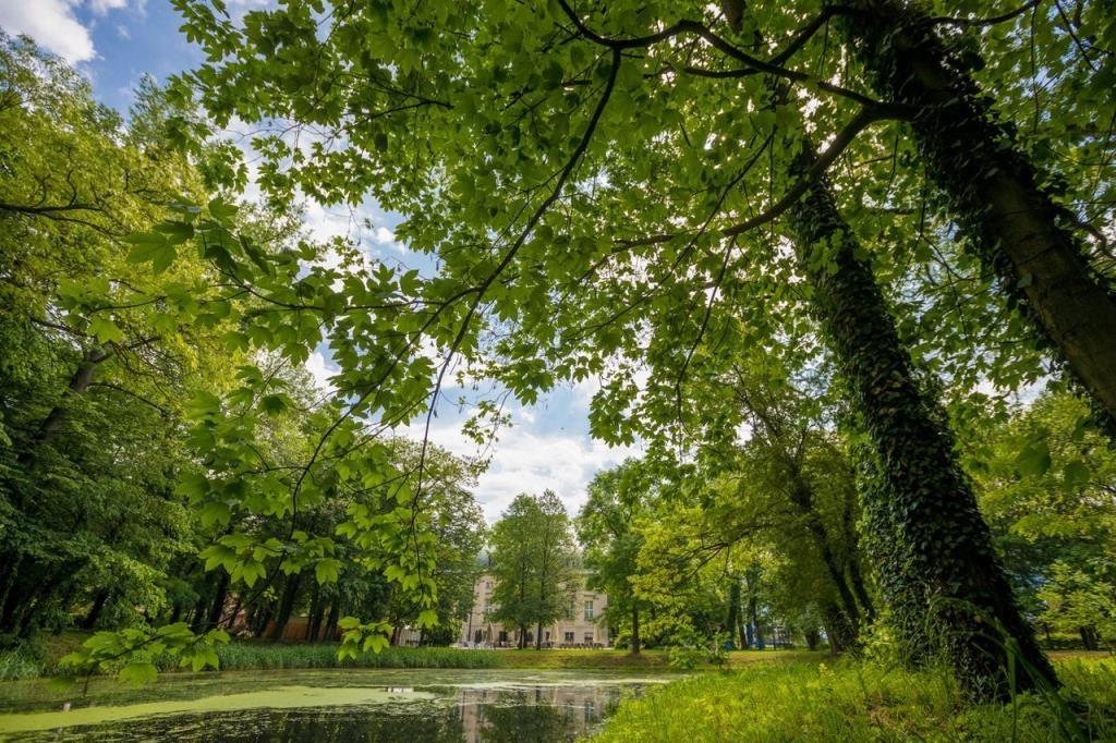 Ogrody i tereny zielone wokół pałacu